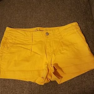 Mellow Yellow Shorts